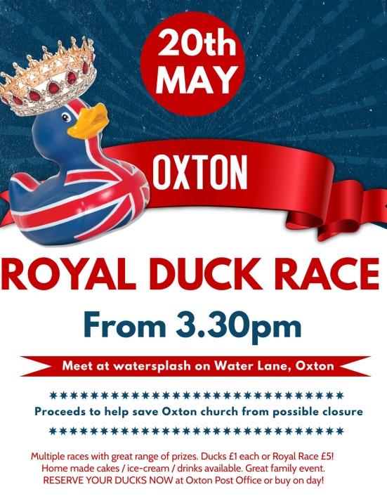 duck race poster 1