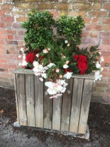 Are There Any Green Fingers Out There With A Bit Of Spare Time??